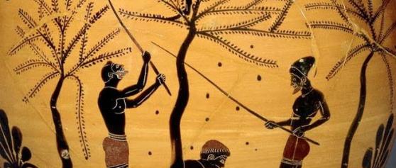 L'olio di Venafro? L'oro verde più ricercato del mondo antico